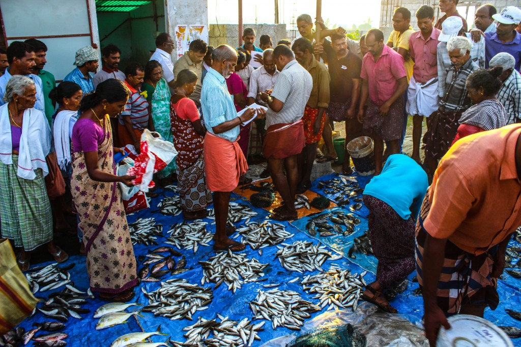 Traditional Fish Auction